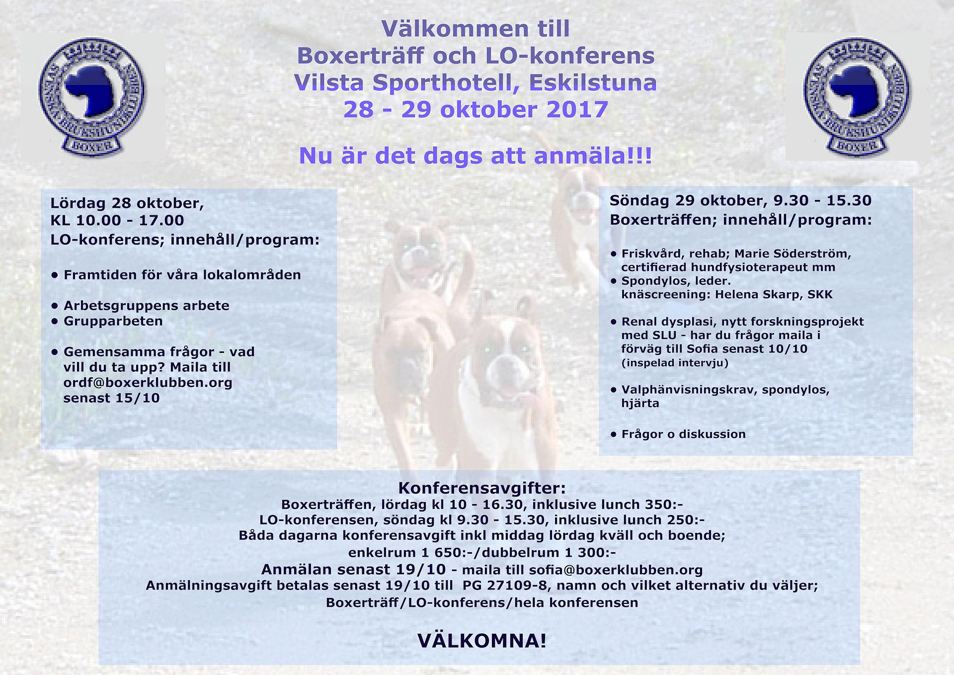 low priced 6765d a14a2 Category Blog - Svenska Boxerklubben
